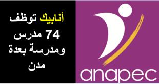 أنابيك توظف 74 مدرس ومدرسة بعدة مدن