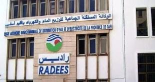 RADEES Recrute Plusieurs profils 2021 (29 Postes)