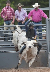 A cowboy tries his hand at bull-riding during the Great Lakes Rodeo. (photo by Ron Caspi)