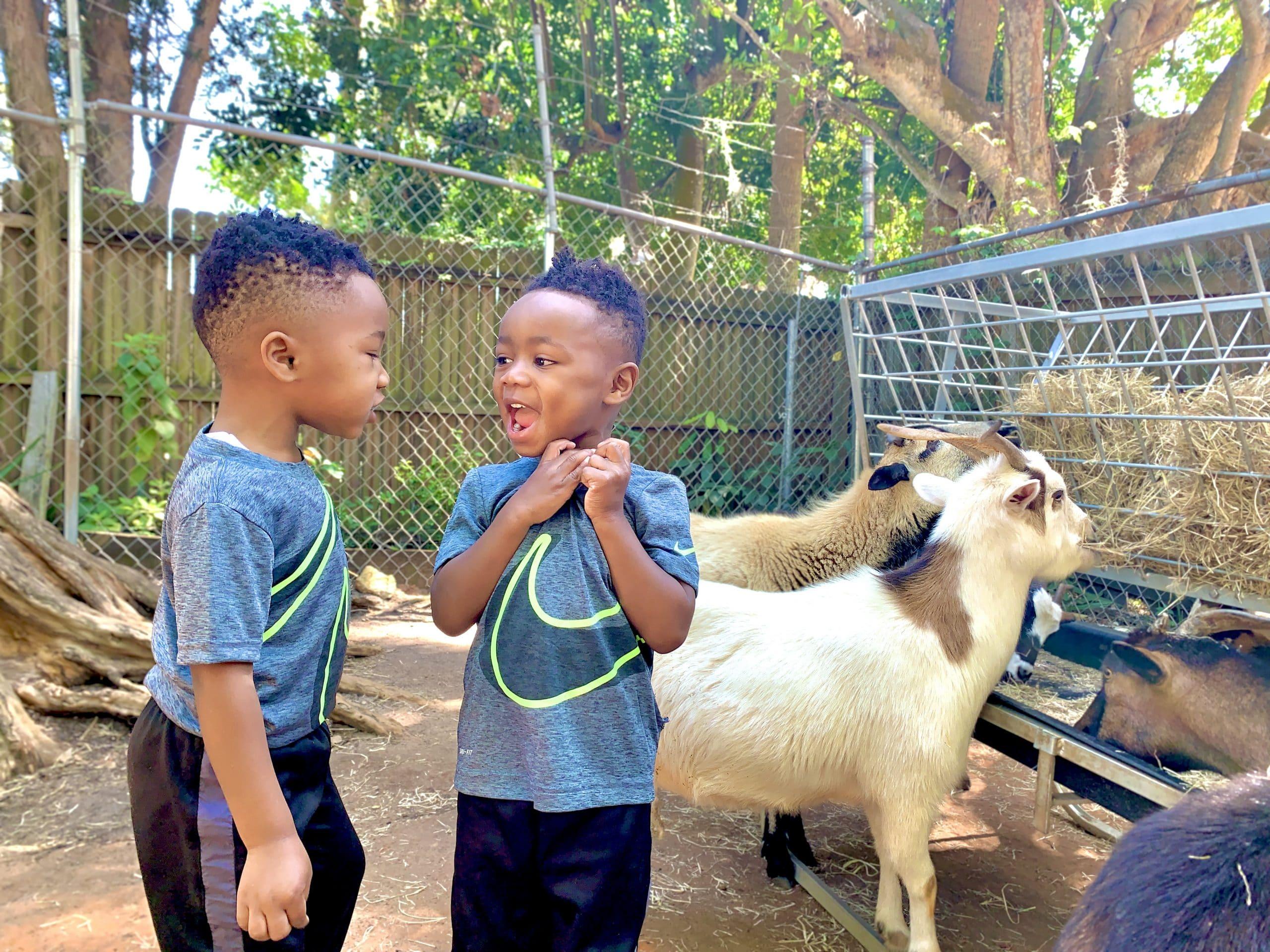 Sarasota Things to do with kids