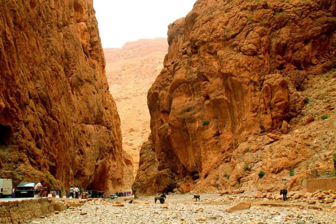 3 days Marrakech to fes desert tours