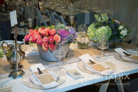 Spotted Owl Events and Promotions