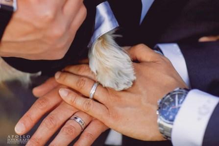 palm-event-center-gay-wedding-photos-h-81
