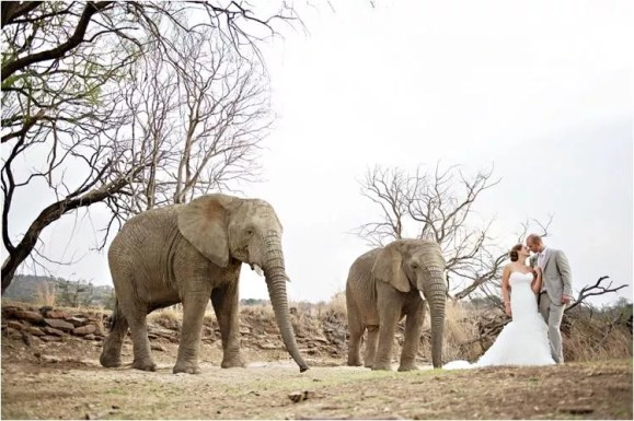 cm_askarilodge_weddings0049