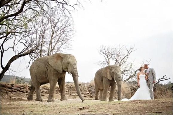 cm_askarilodge_weddings0049