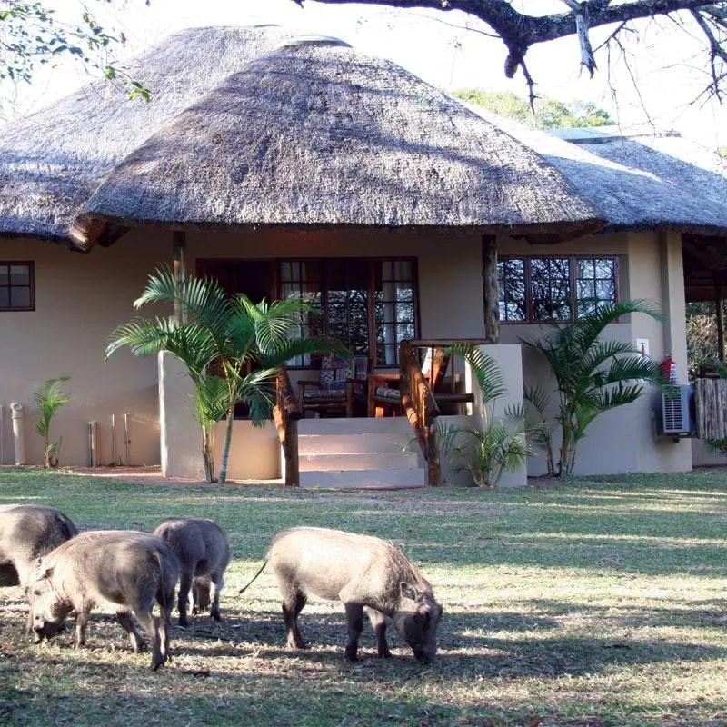 Win a Honeymoon at Bonamanzi, worth R 16 500