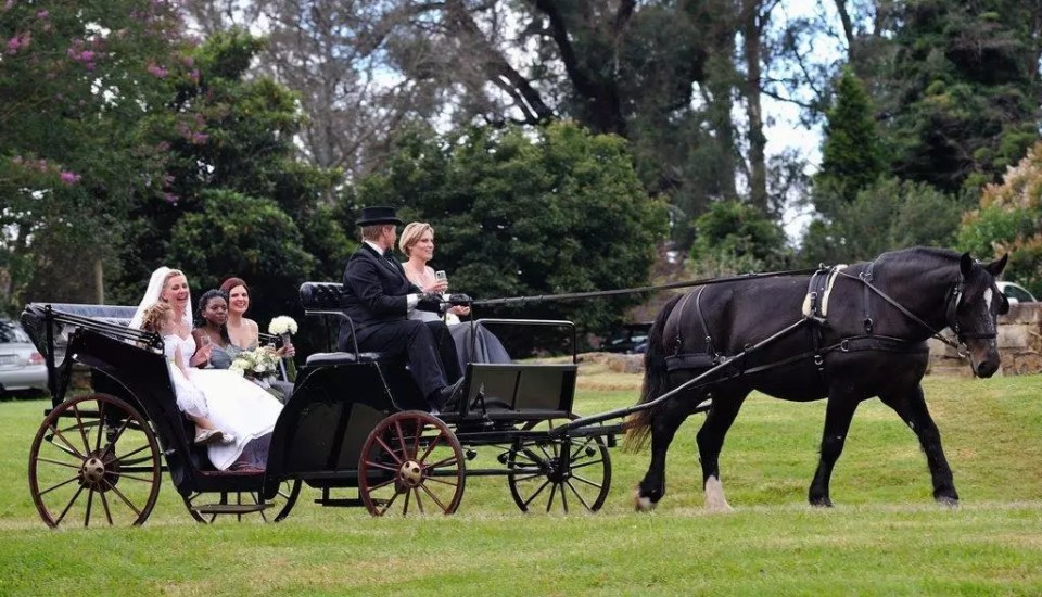 Champagne Carriages