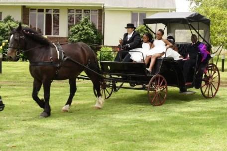 Wedding Decor in Pietermaritzburg