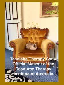 Tanesiha unoffical Therapy feline of Marriage Works. Animals offer uncondtional loving.