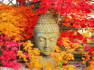 buddha-2505791_640