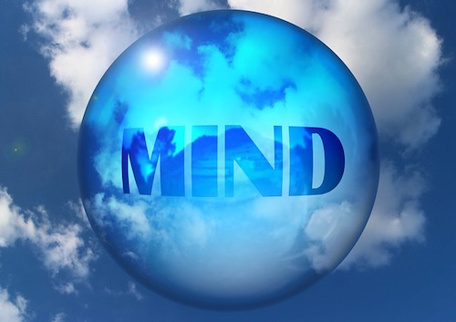 Open your mind learn today. The world can be yours!