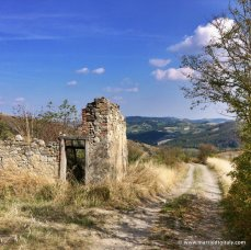 property near Canossa