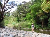 An easy walk up an ol' creek.