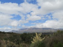 The view before the ascent up Tongariro.