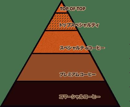 スペシャリティコーヒーの階層図