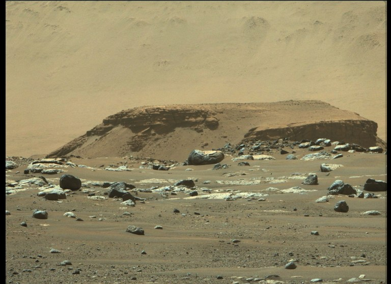 """From its landing site, """"Octavia E. Butler Landing,"""" NASA's Perseverance rover can see a remnant of a fan-shaped deposit of sediments known as a delta (the raised area of dark brown rock in the middle ground) with its Mastcam-Z instrument."""