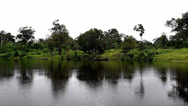 Ilhas artificiais na Amazônia são descobertas - Mar Sem Fim