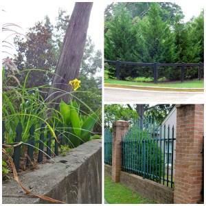 fences, walking
