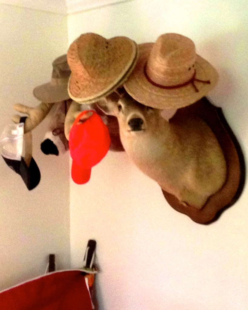 deer head, hats