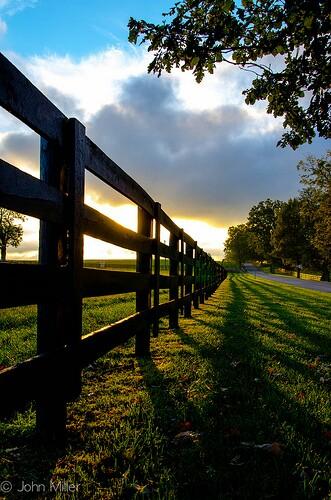 fence, field