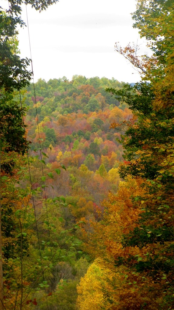 A Trip Down Memory Lane: West Virginia Fall Foliage