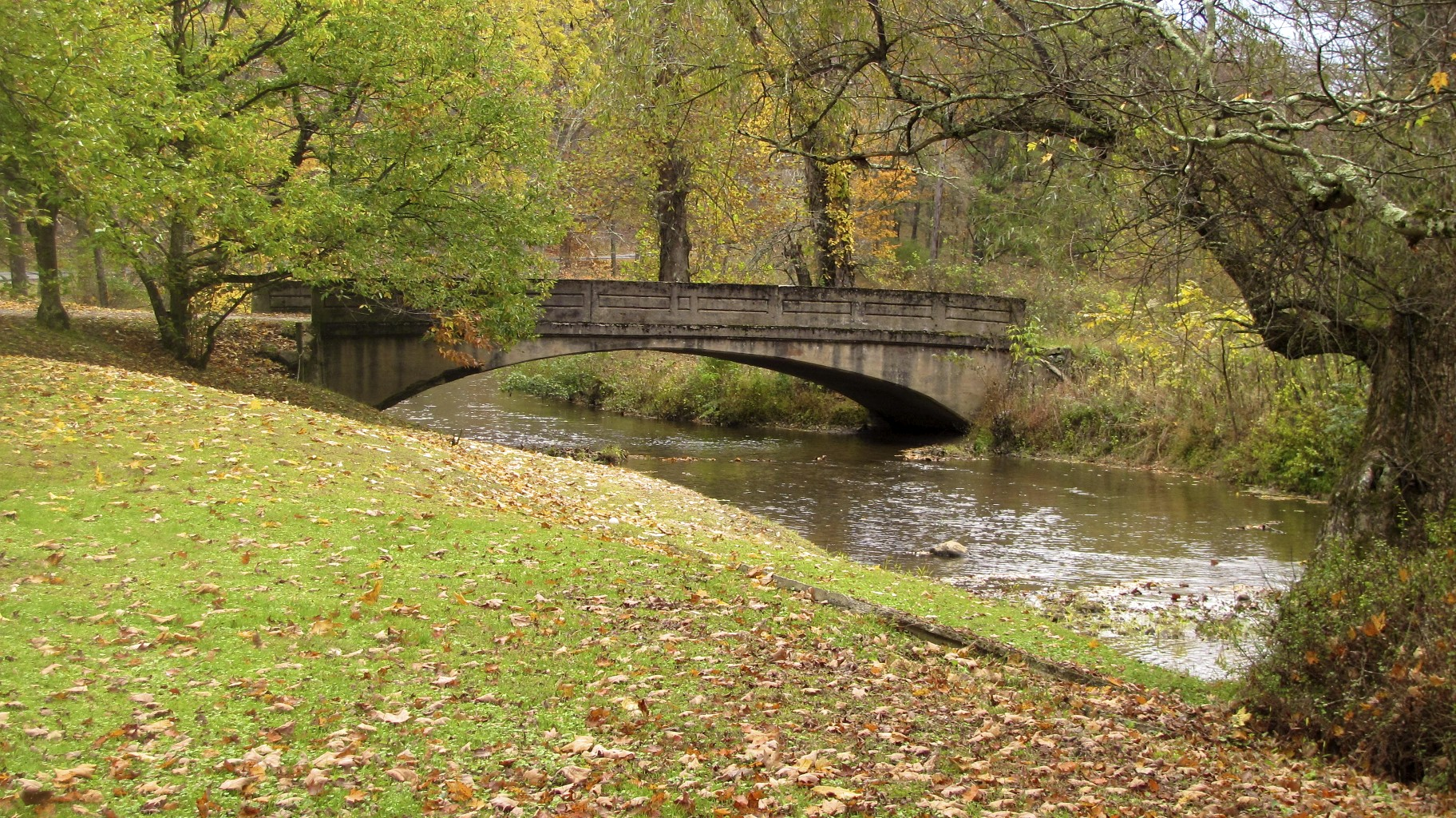 bridge, stream, fall foliage