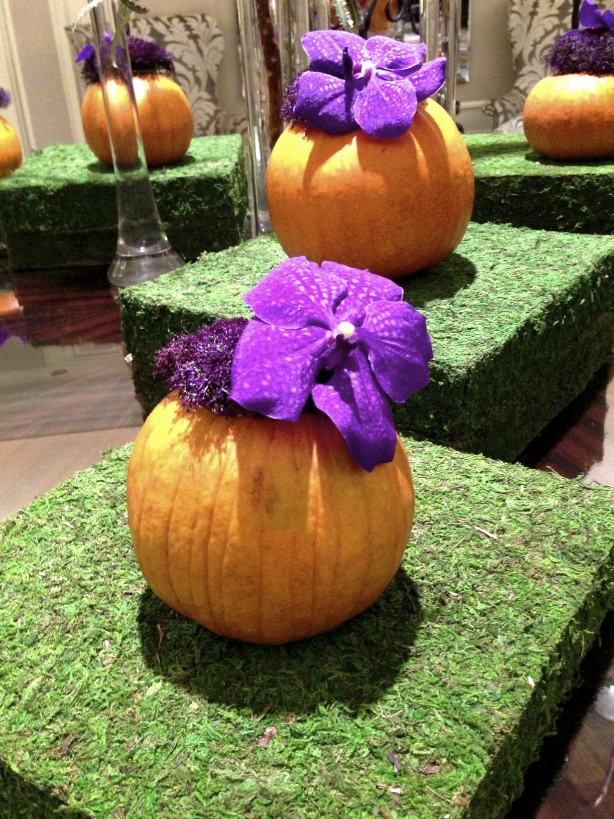 orchids and pumpkins
