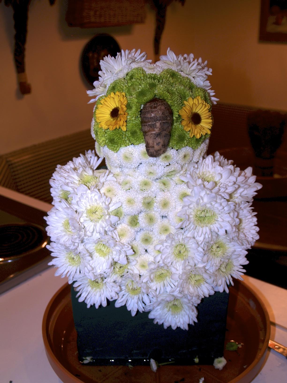 Flowers, owl