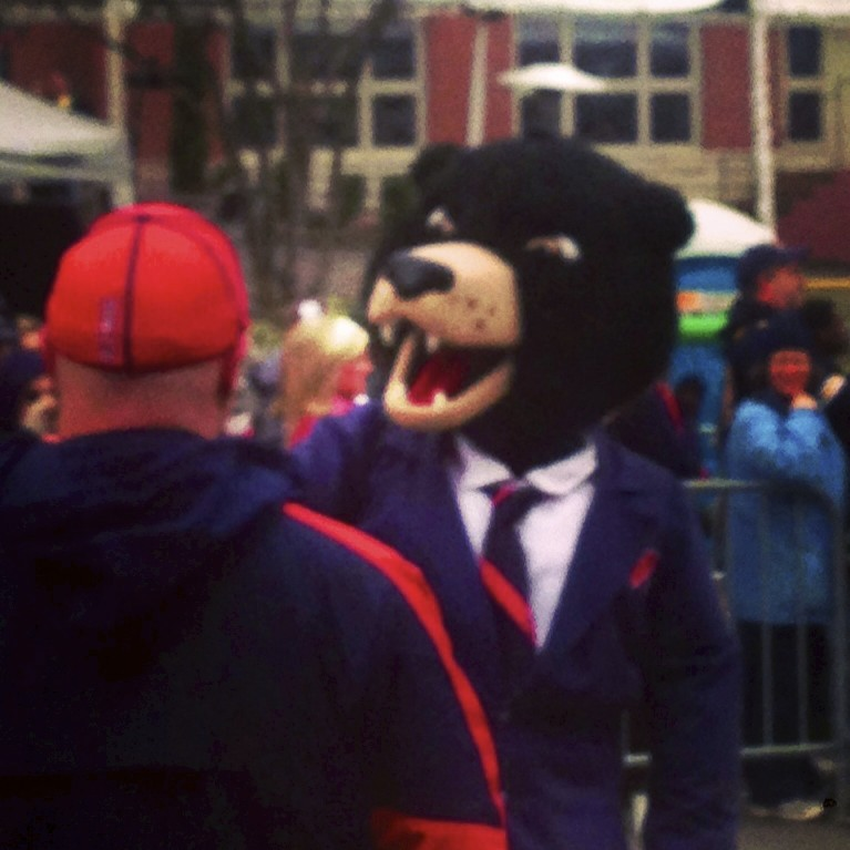 Black Bear Ole Miss Mascot