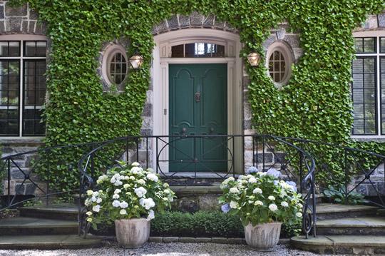 front door with ivy