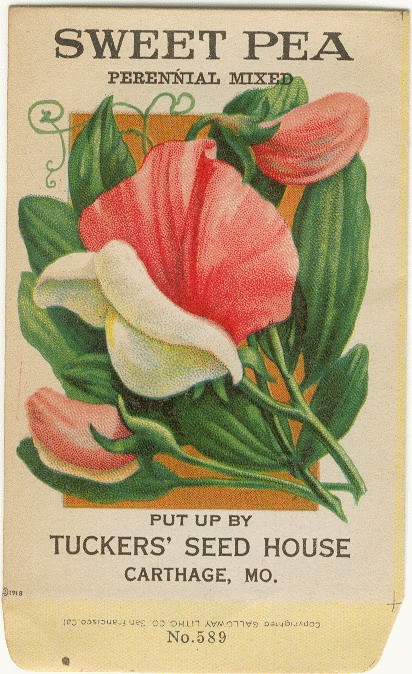 sweet pea seed packet