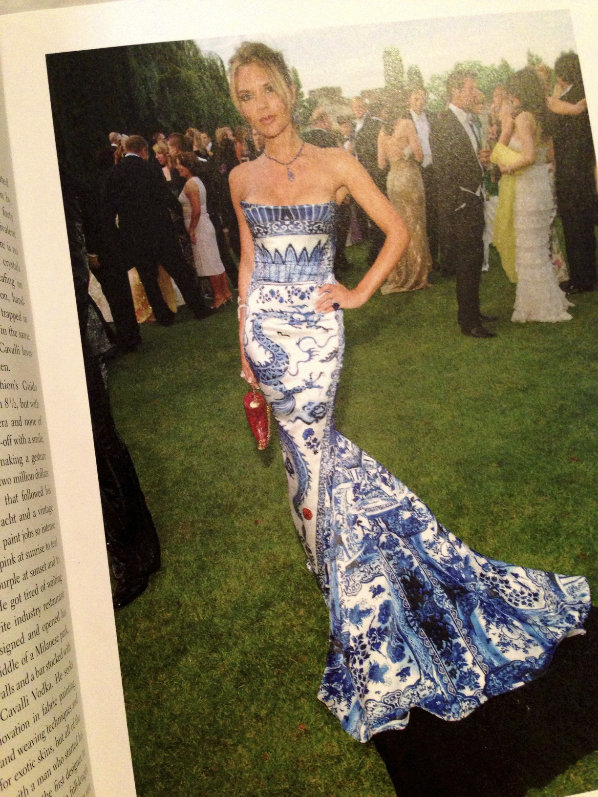 Ming Vase gown by Roberto Cavalli