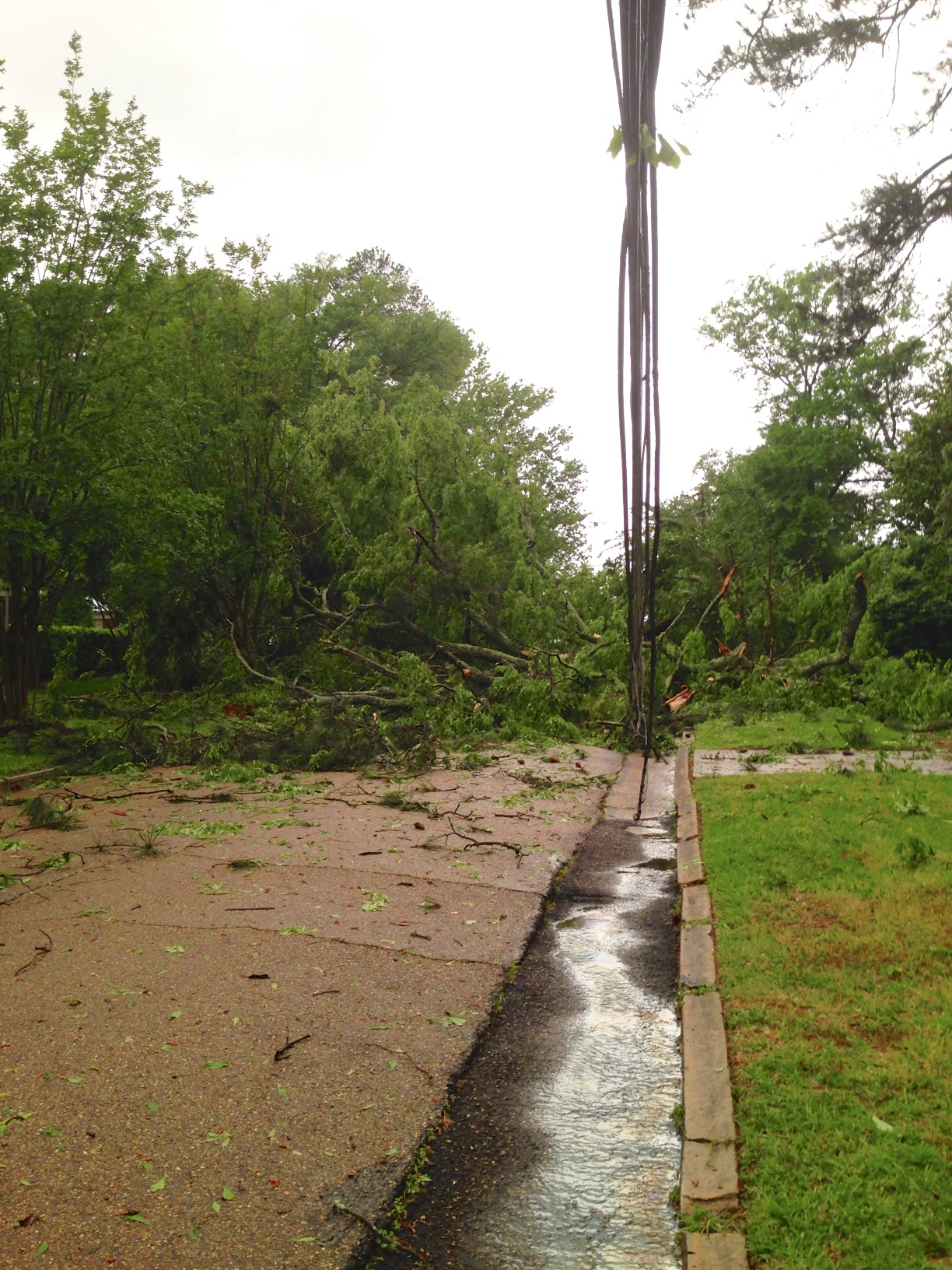 downed power lines from storm