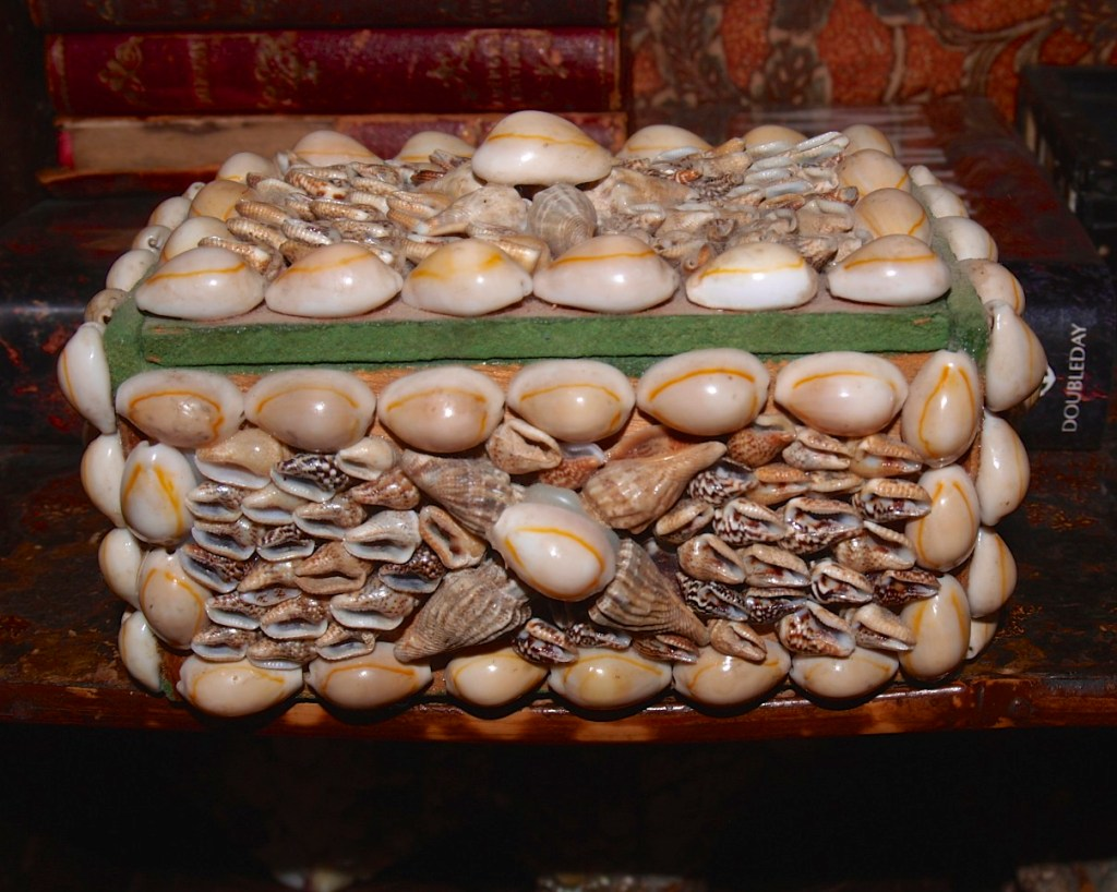 Collection of sea shell boxes