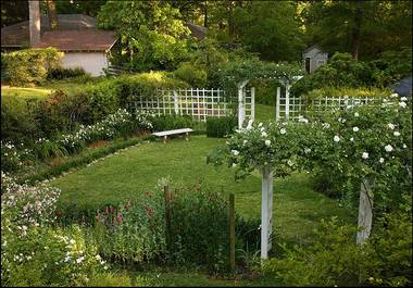 Welty garden