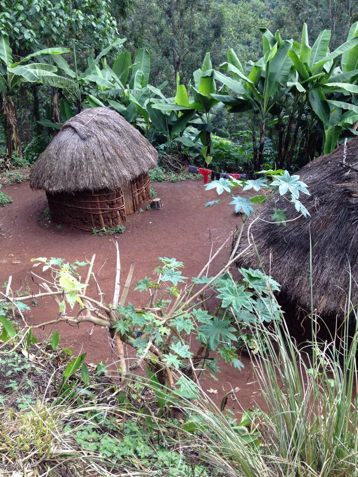 Tanzania Ric Lodge