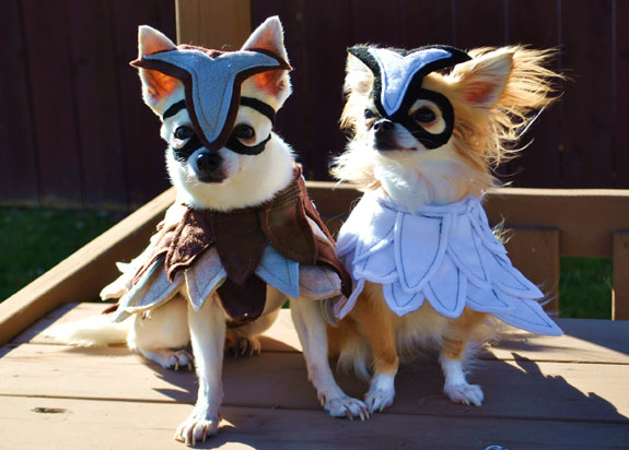 dogs in owl costume