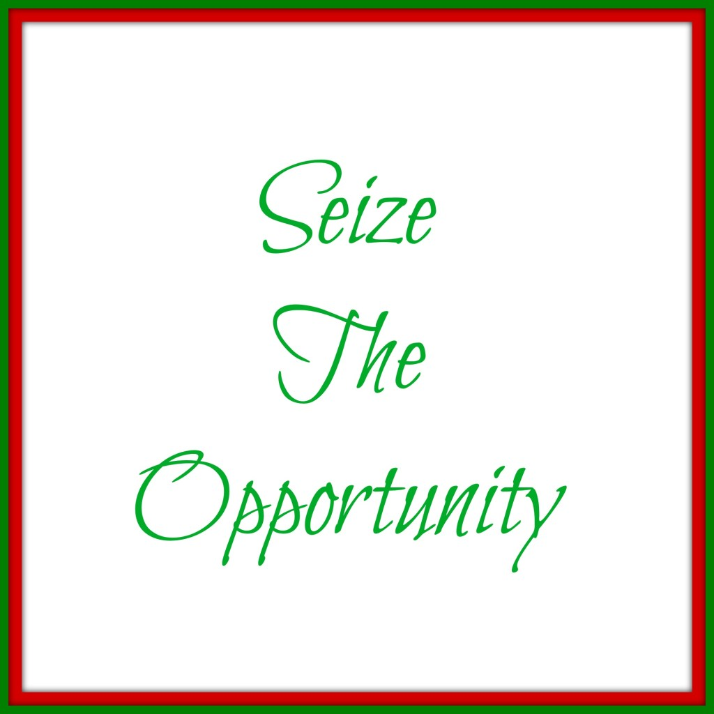 seize the opportunity
