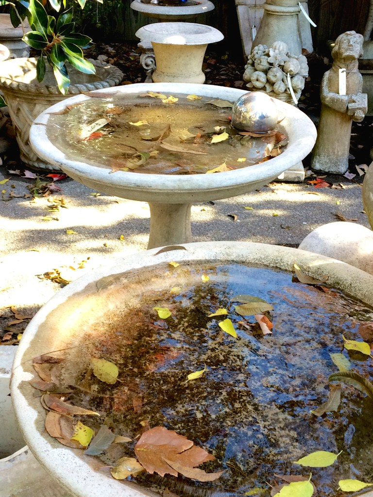 Frozen leaves in birdbath