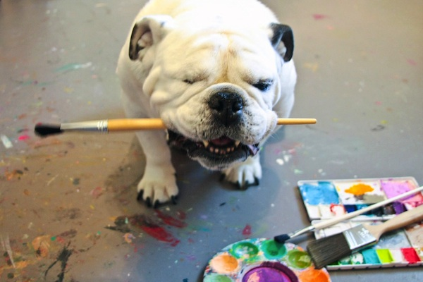 dog with paintbrush