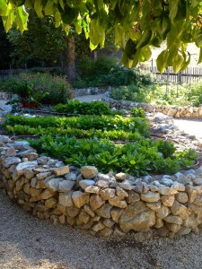 Natural-Stone-Raised-Flower-Bed-Fresh-Ornamental-Plants-Leafy-Trees