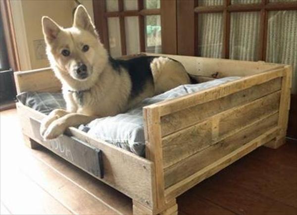 pallet-dog-bed