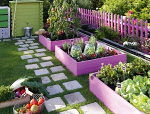 raised beds colorful