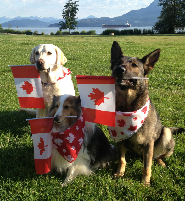 Canada_Day_Canines