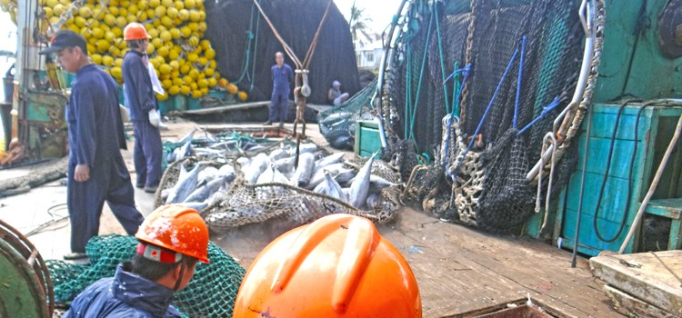 Promoting island engagement in fisheries