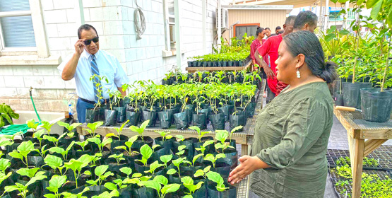 New nursery a hit