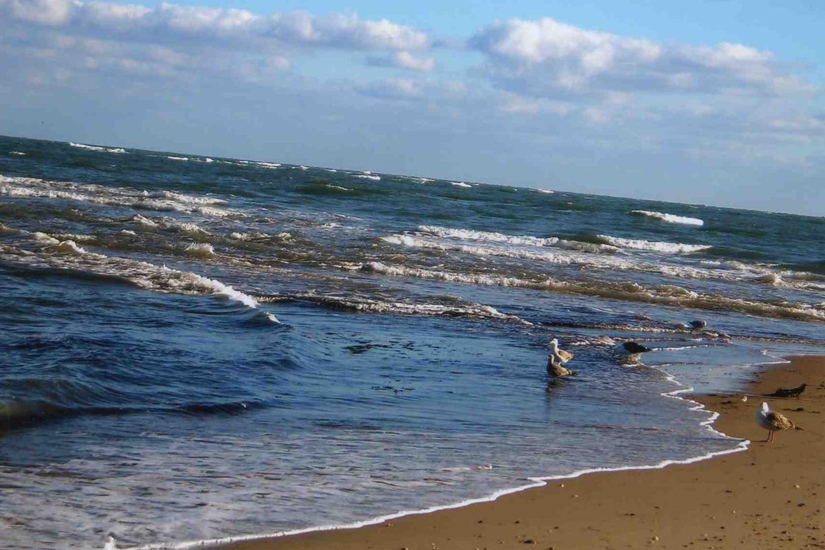 east-coast-beach1.jpg