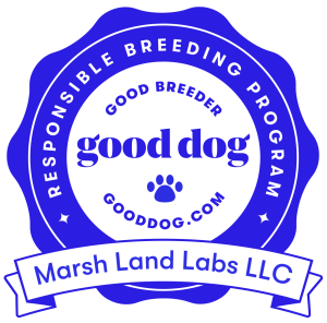 Gooddog logo