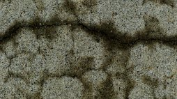 resembling a riverbed seen from an airplane: cracks in concrete retain moisture hours after the rain