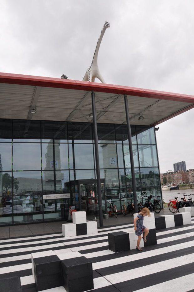 Stoer: een dinosaurus op het dak!